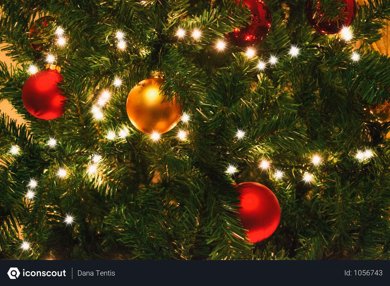 Christmas Ball And Lights Decoration On  Christmas Tree Photo