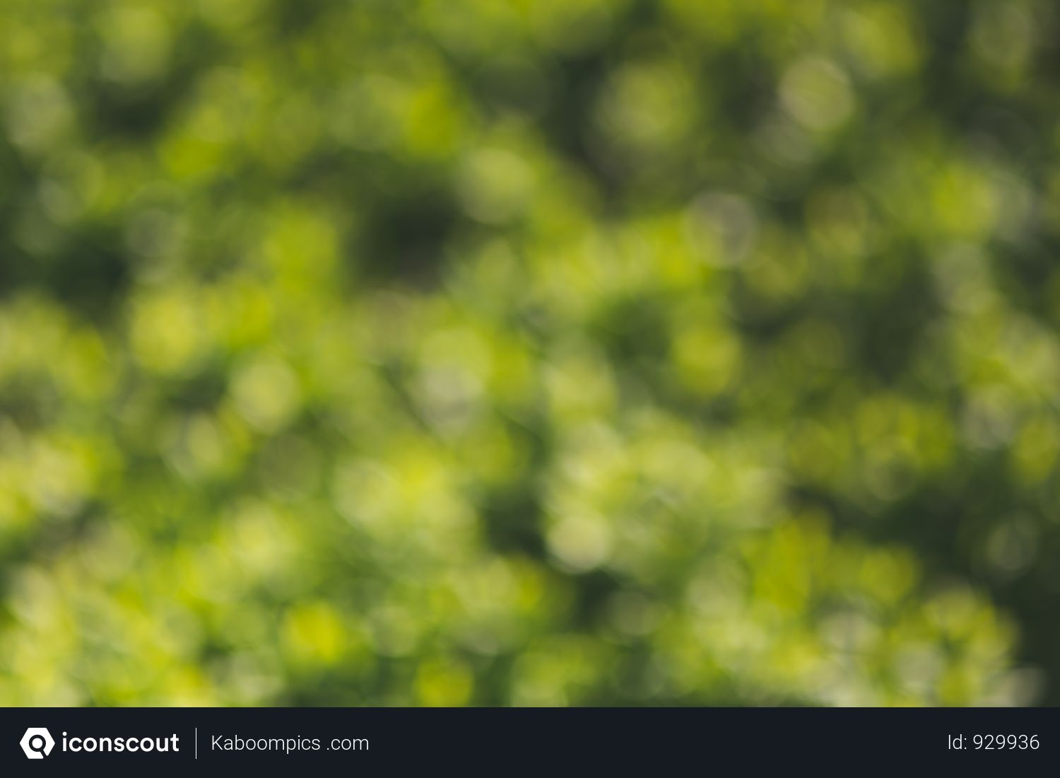 Free Green Bokeh Effect Of Field Photo download in PNG & JPG format