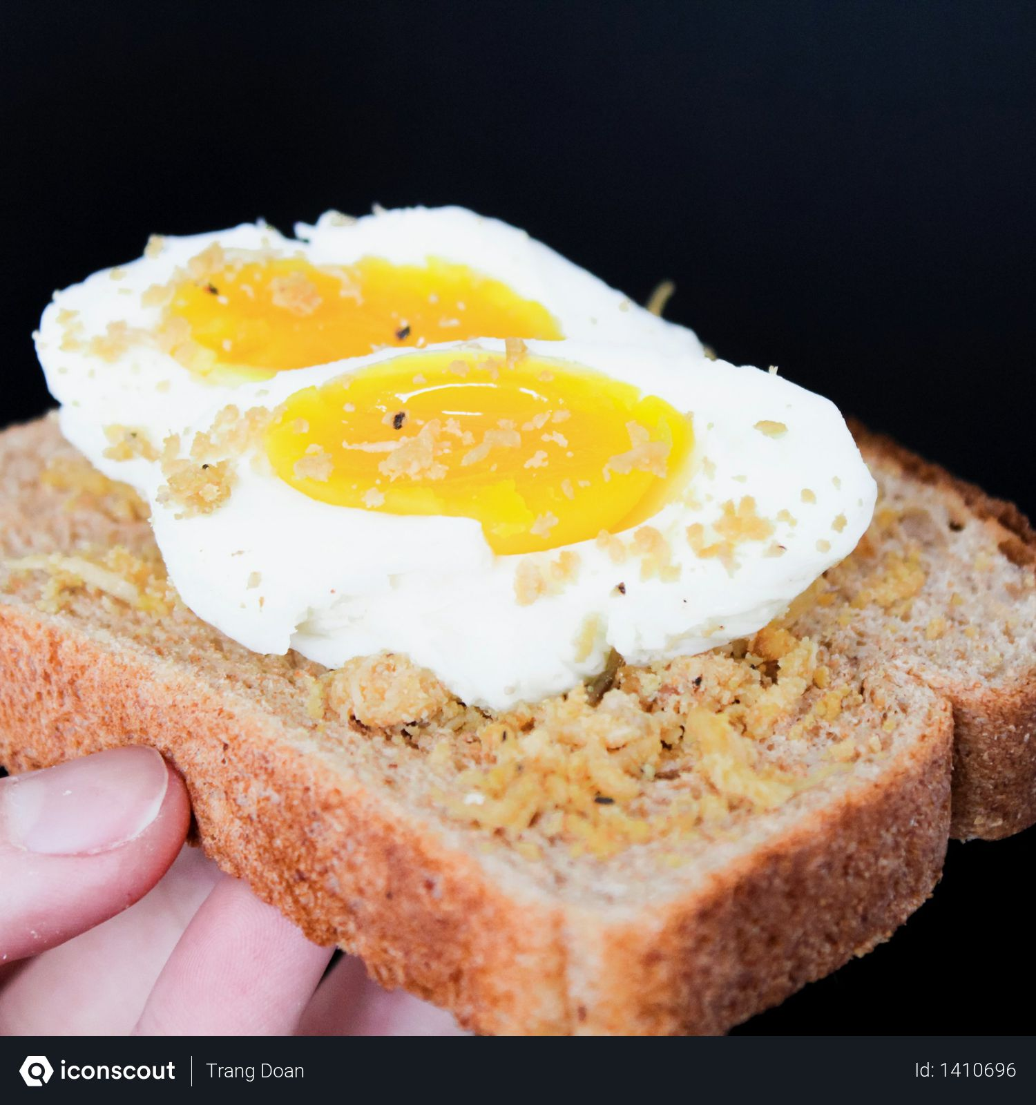 Sliced Bread With Eggs Photo