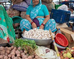 Street Food Market Shoot
