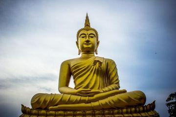 Buddhism Shoot