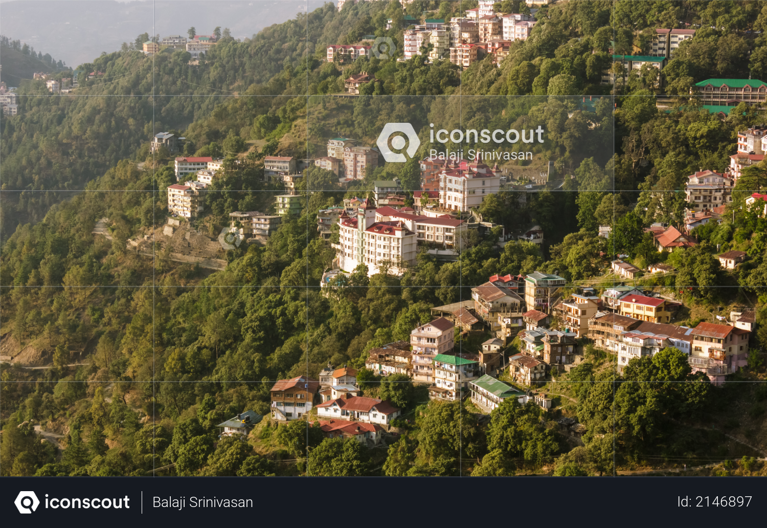 A view of the hotels and the houses spread around the forested slopes in the Himalayan hill station of Shimla. Photo