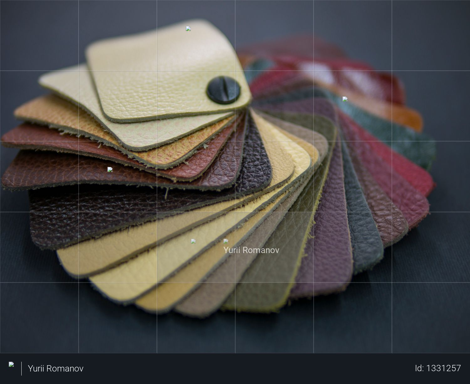Fan catalog with colored leather samples Photo