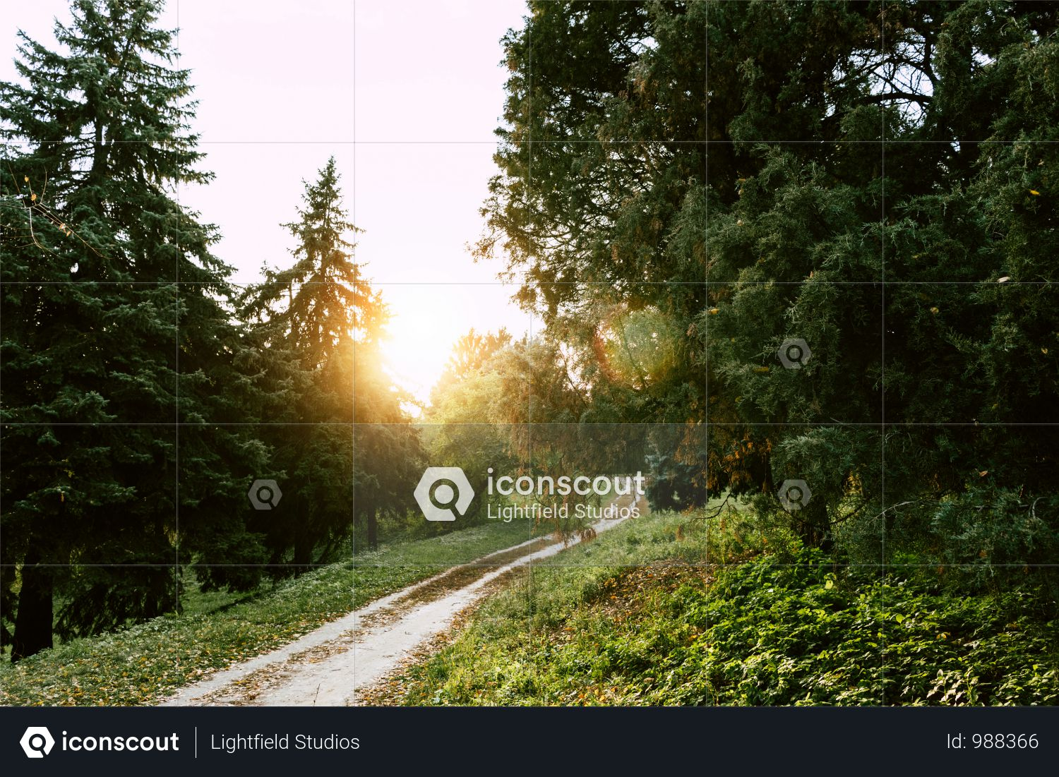 Footpath In Beautiful Autumn Park At Sunset Photo