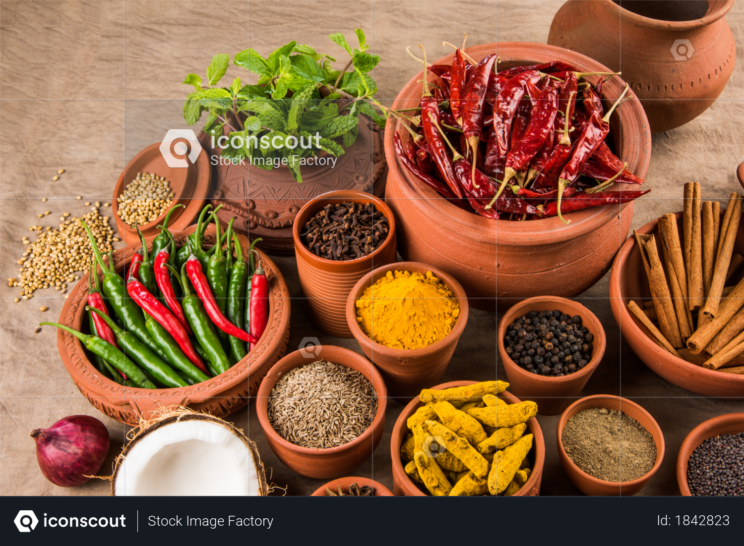 Indian Spices in terracotta pots Photo