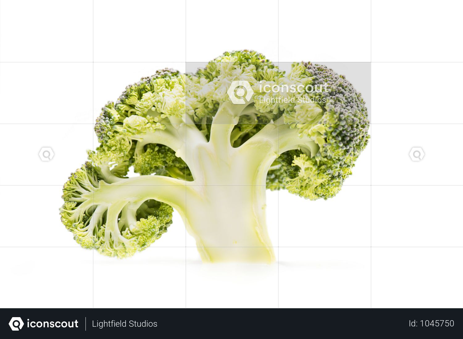 Slice Of Healthy Ripe Broccoli Branch Isolated On White Photo