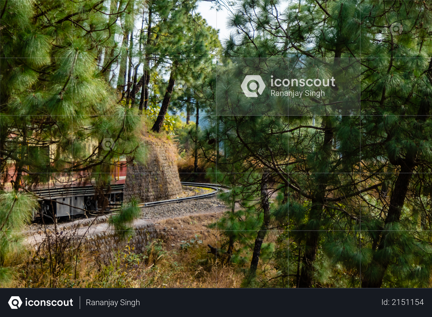 Train visible behind the trees along side mountain, travel concept Photo