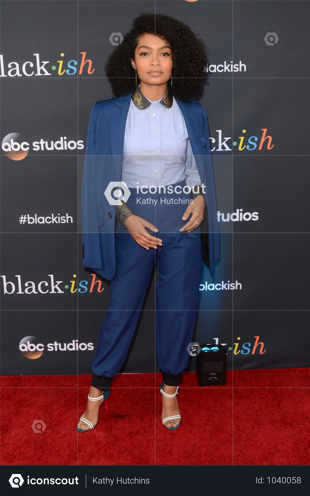 "USA - ""Blackish"" FYC Event - North Hollywood Photo"