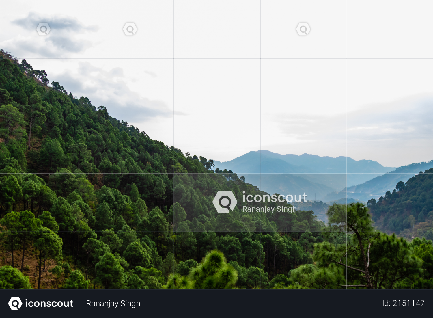 Wide shot of beautiful hills covered with trees and sky in the background Photo