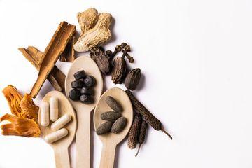 Herbal Medicines Shoot