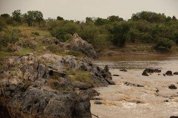 Canal At Masai Mara Kenya Africa Shoot