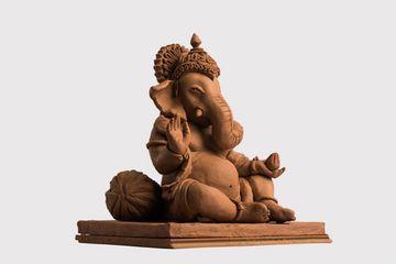 Eco Friendly Ganesh Shoot