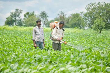 Indian Farmer Lifestyle Shoot
