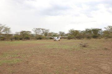 Flight At Rural Area Masai Mara Kenya Africa Shoot