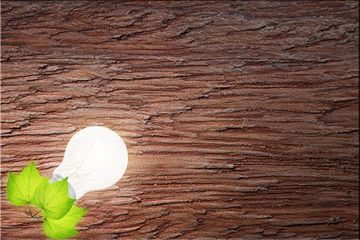 Love The Environment, Love Nature, Save Energy And Light. Wood Grain Background Shoot