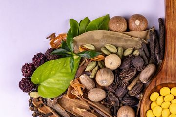Allopathy Medicines Shoot