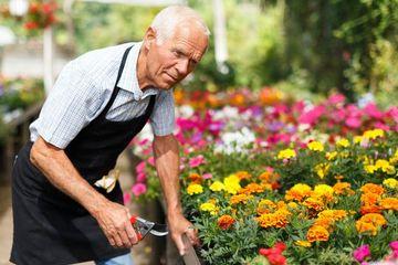 Gardening Shoot