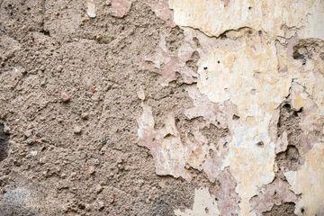 Ruins Wall Texture Of Mughal Princess Zeb-un-Nisa's Palace And Govt. School Of Art, Janana Mahel, Aurangabad, Maharashtra, India, South East Asia. Shoot