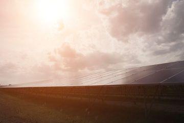 Solar Energy Shoot