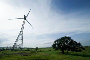 Windmills Shoot