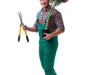 Gardener Shoot