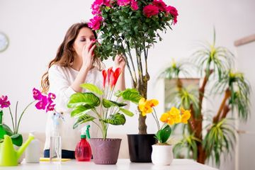 Florist Shoot